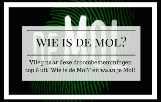 Avonturista Wie is de Mol